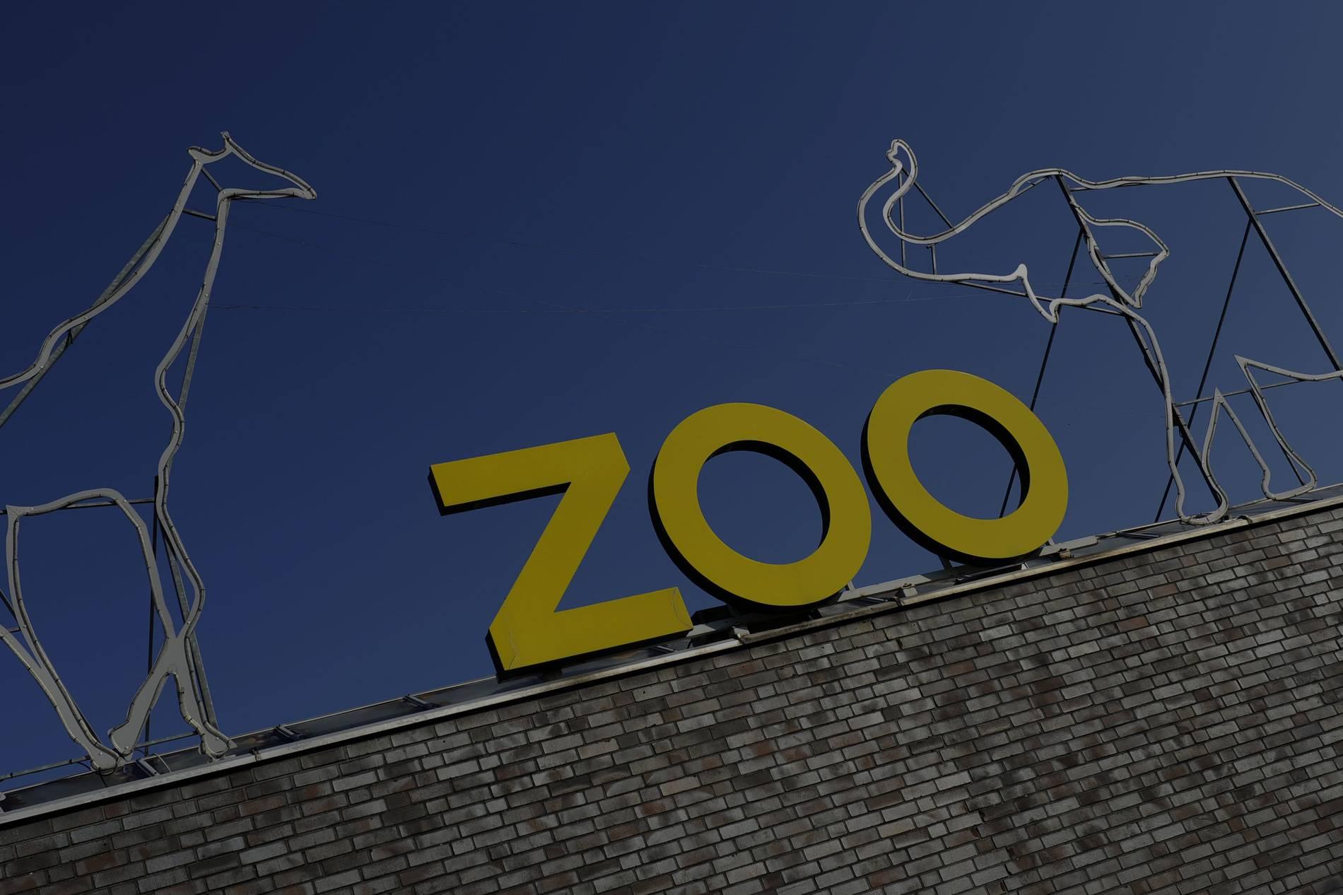 Kölner Zoo Corona