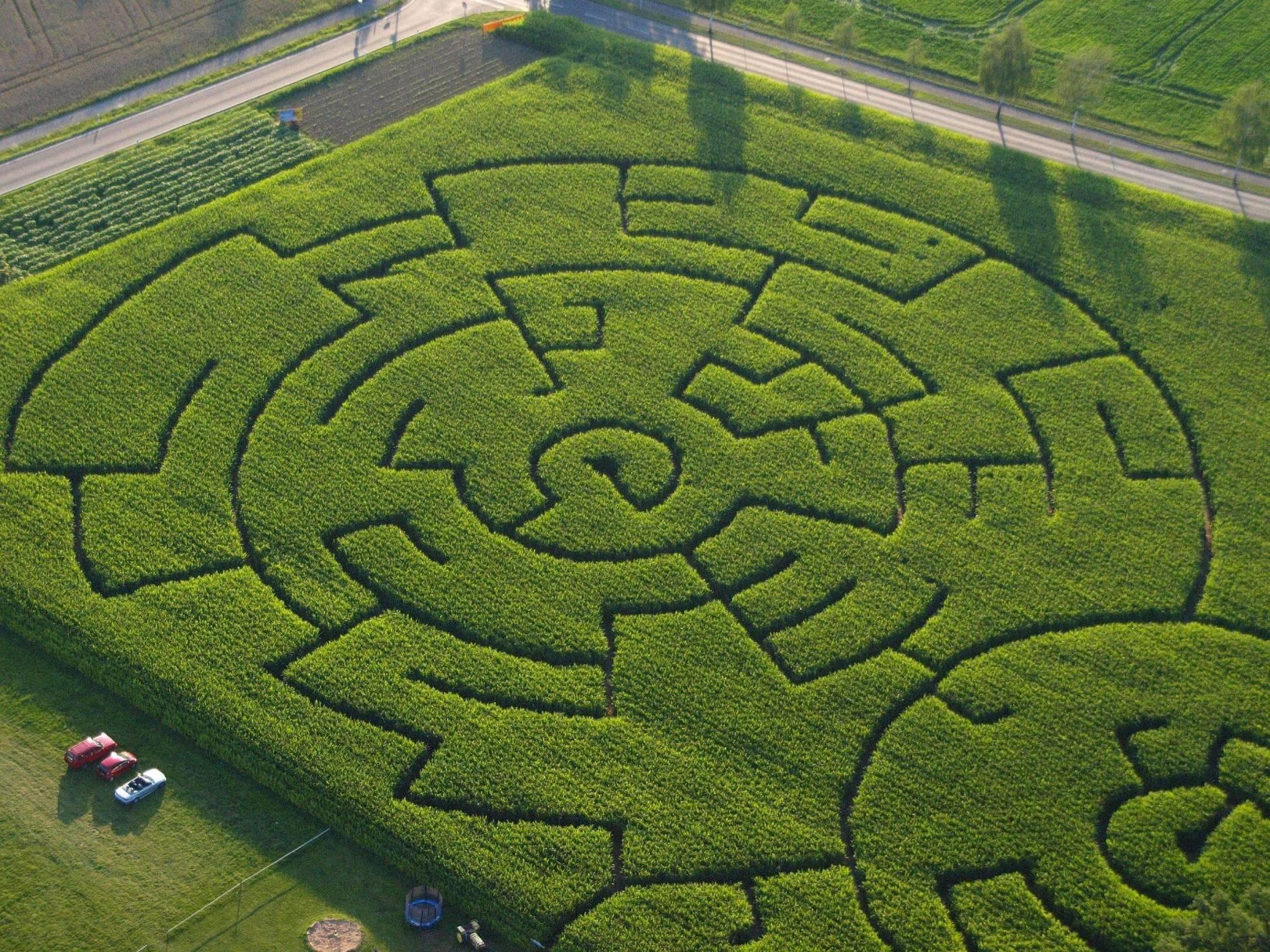 Gut Heiderhof In Vinxel Maislabyrinth Braucht Eine
