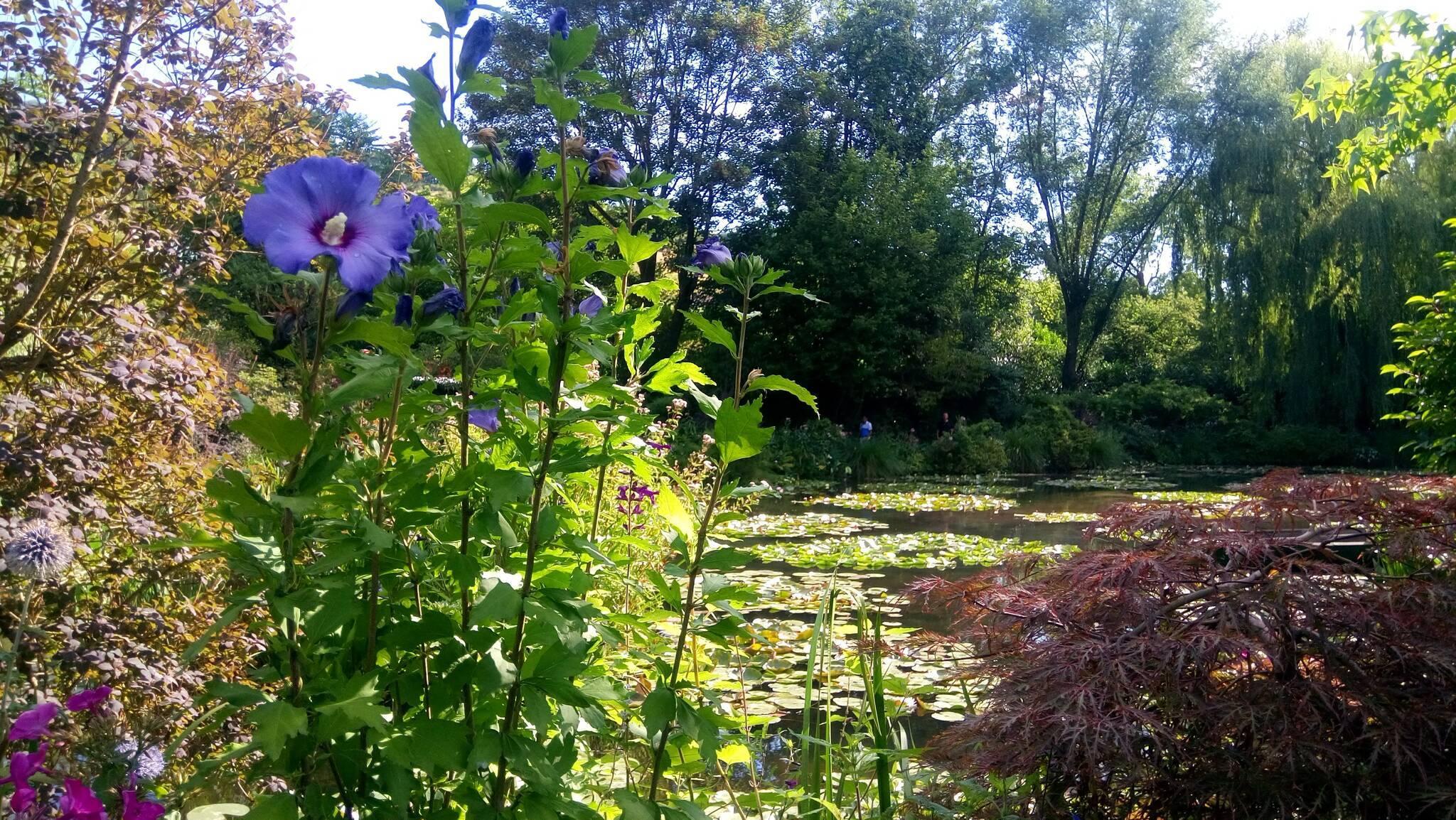 MS SWISS RUBY: Faszination an Oise und Seine (28.7. bis 4.8.)