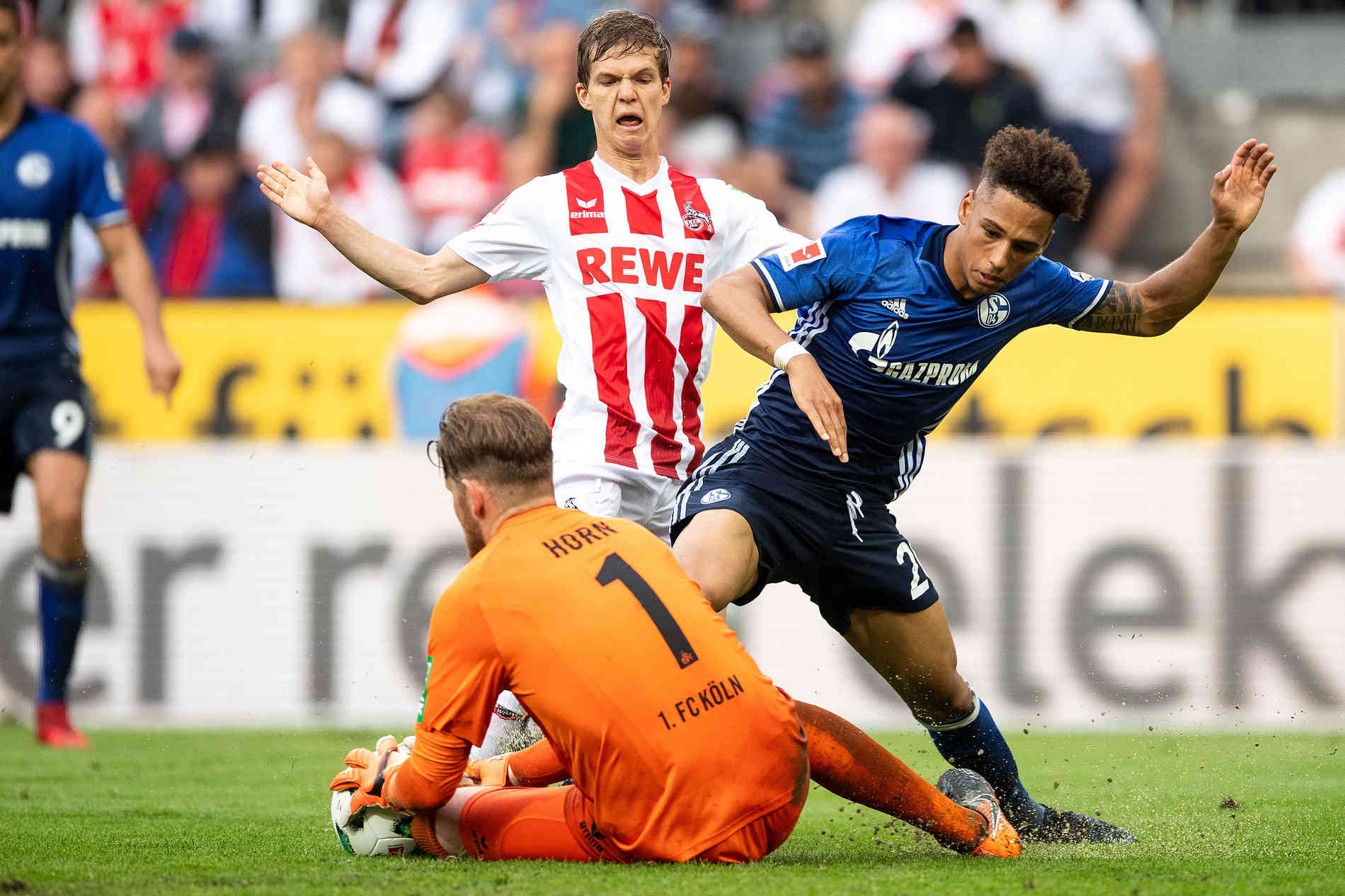 Fc Köln Schalke Dfb Pokal