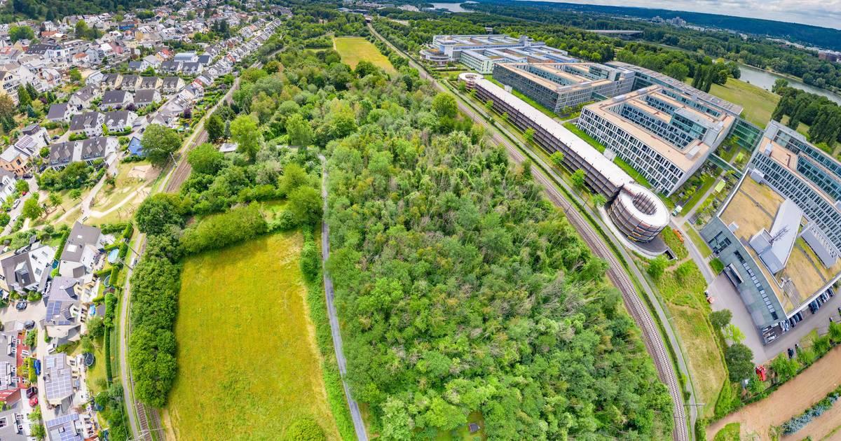 Seilbahn Bonn